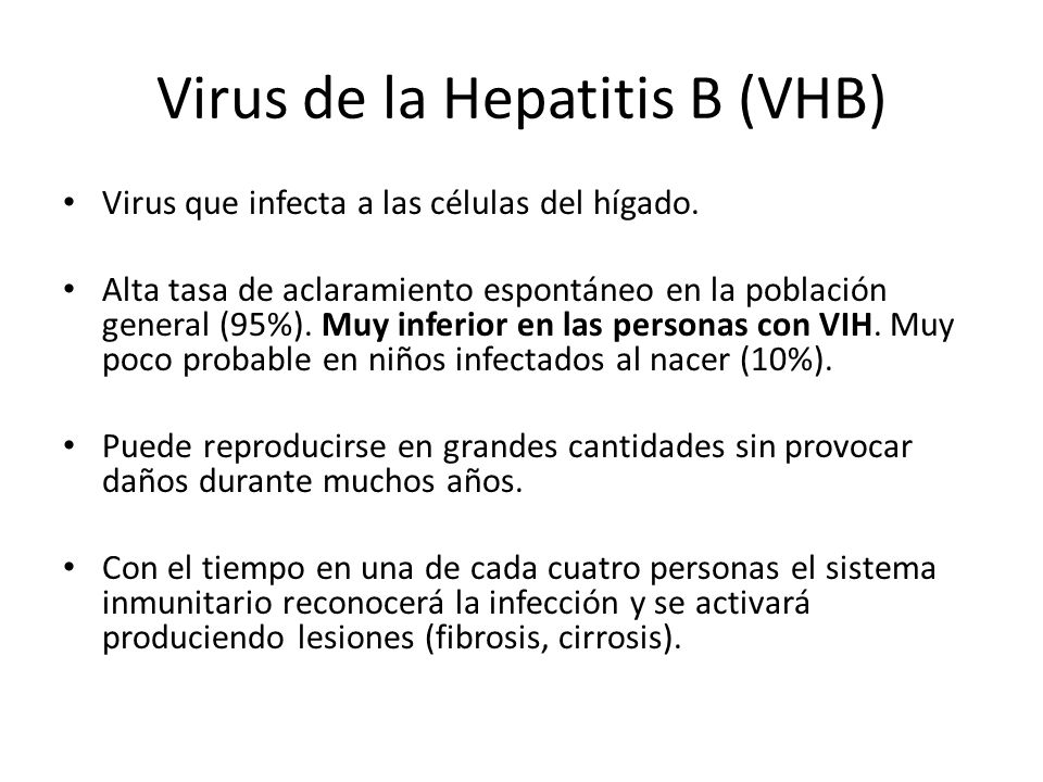 Virus de la Hepatitis B (VHB)