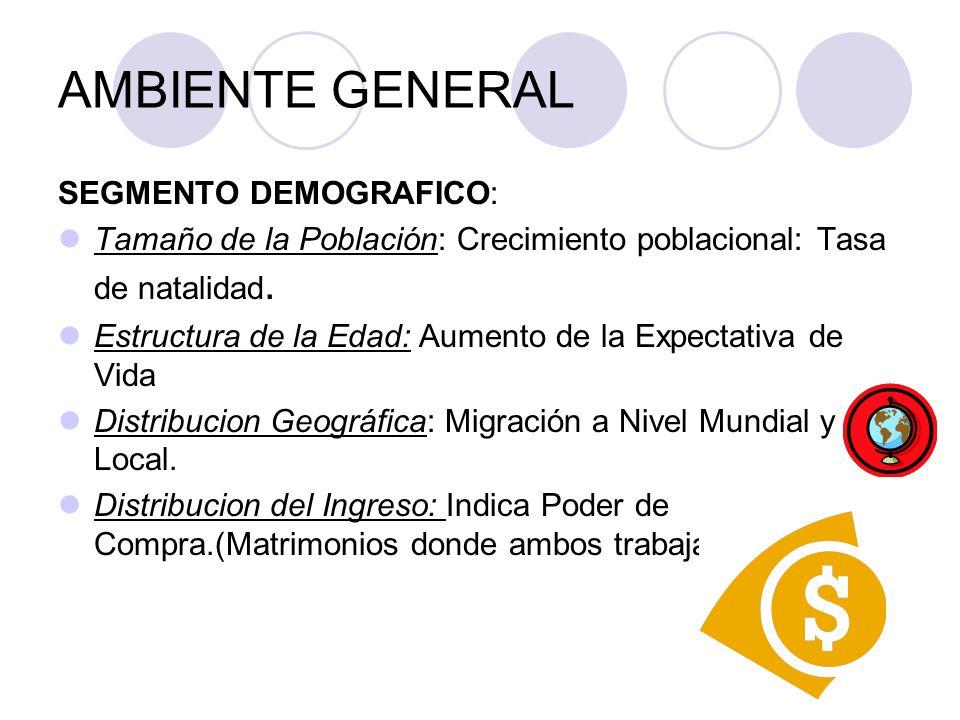 AMBIENTE GENERAL SEGMENTO DEMOGRAFICO: