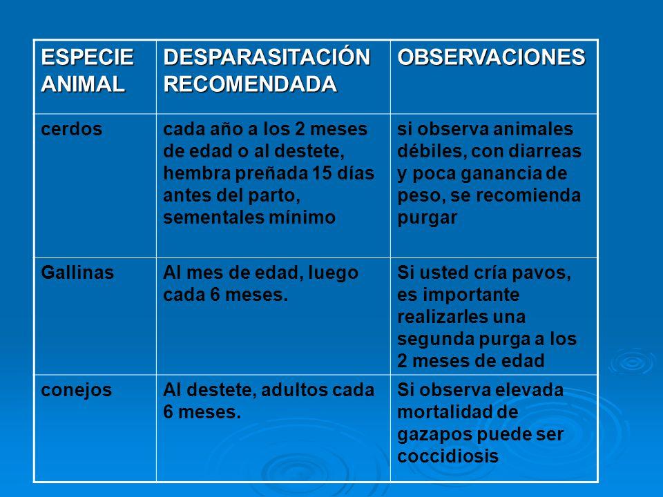 DESPARASITACIÓN RECOMENDADA OBSERVACIONES