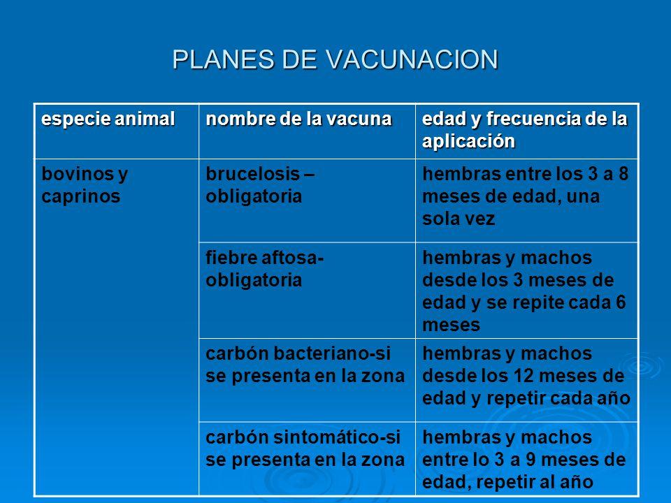 PLANES DE VACUNACION especie animal nombre de la vacuna