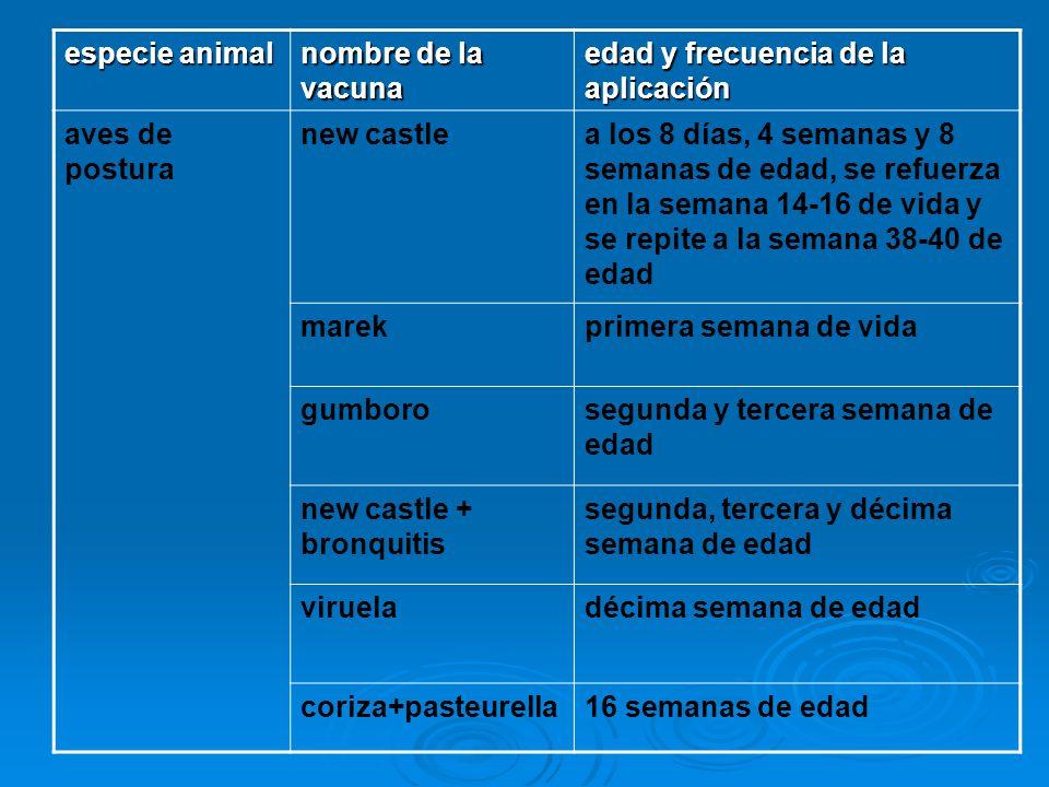 especie animal nombre de la vacuna. edad y frecuencia de la aplicación. aves de postura. new castle.