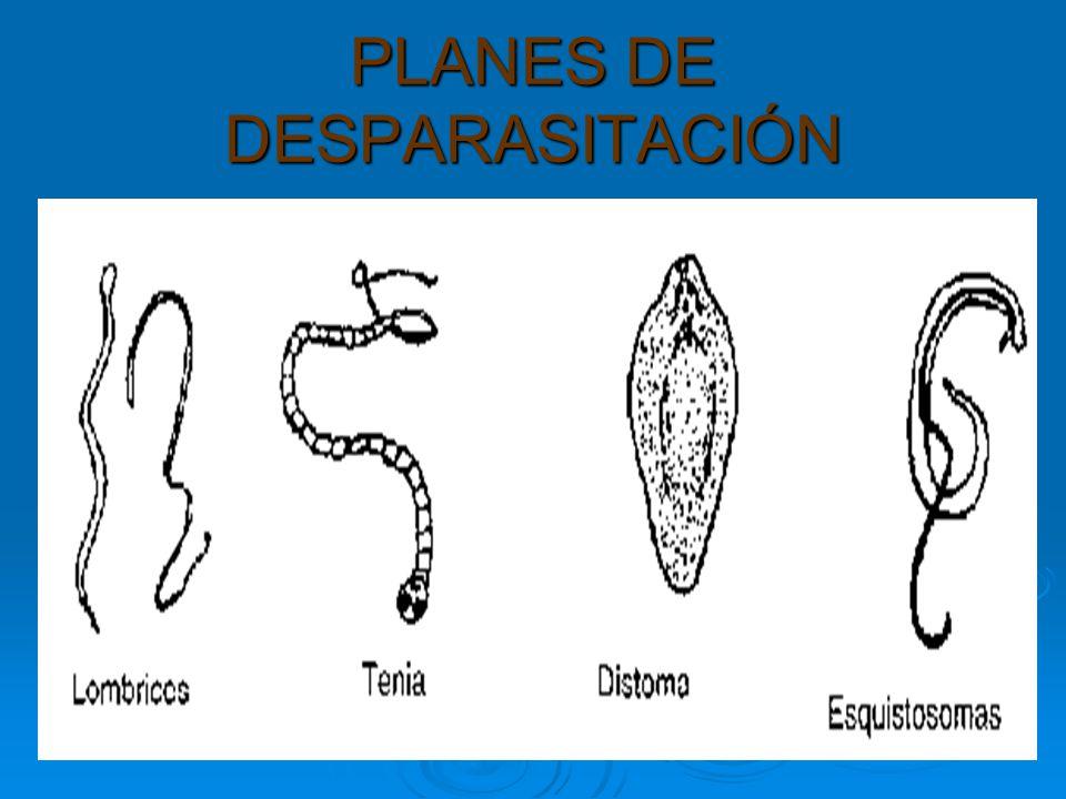 PLANES DE DESPARASITACIÓN