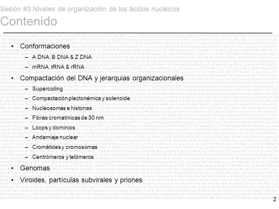 Sesión #3 Niveles de organización de los ácidos nucleicos Contenido