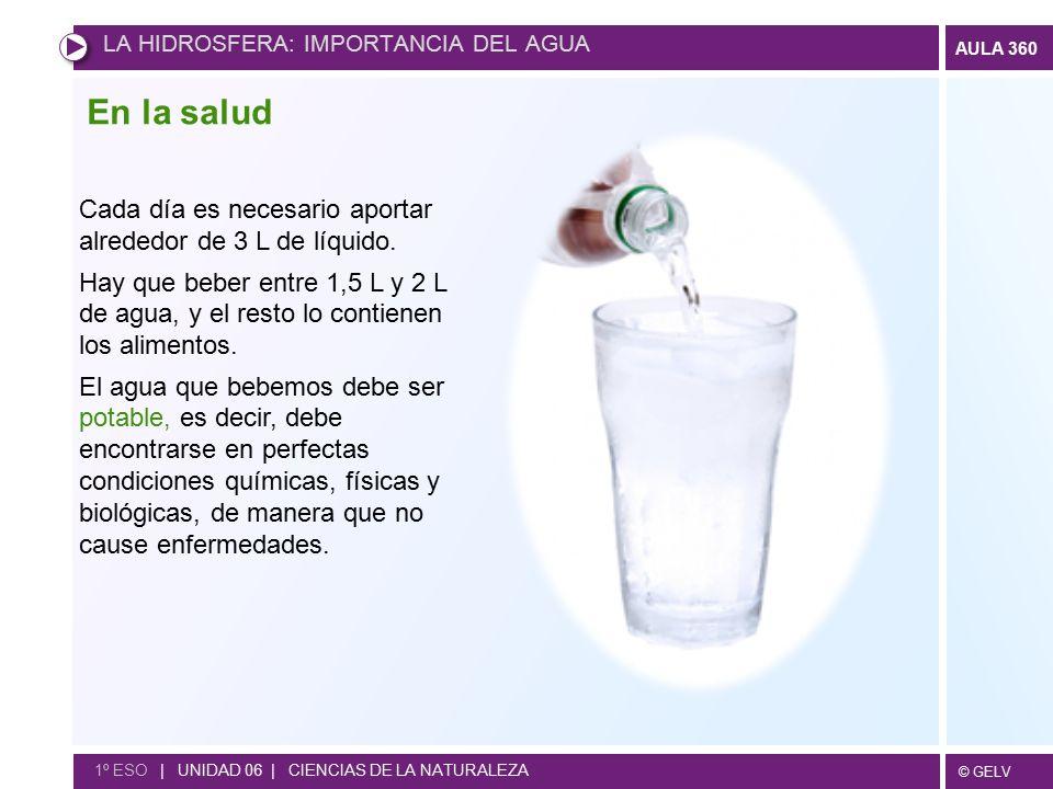 En la salud Cada día es necesario aportar alrededor de 3 L de líquido.