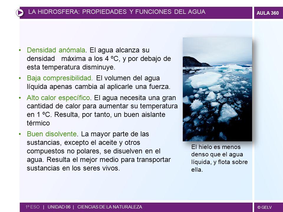 LA HIDROSFERA: PROPIEDADES Y FUNCIONES DEL AGUA