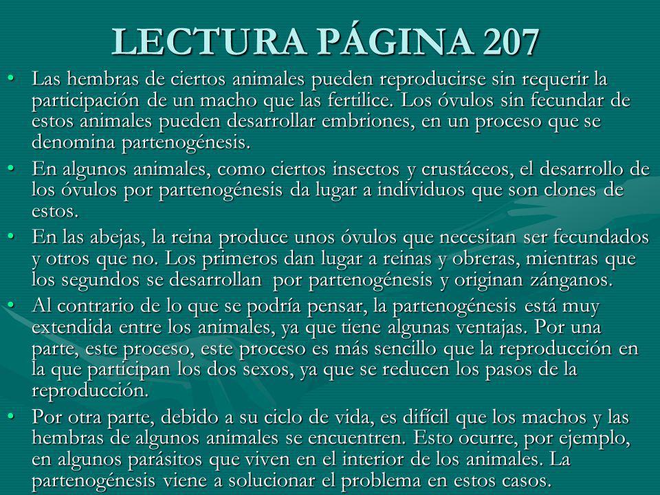 LECTURA PÁGINA 207
