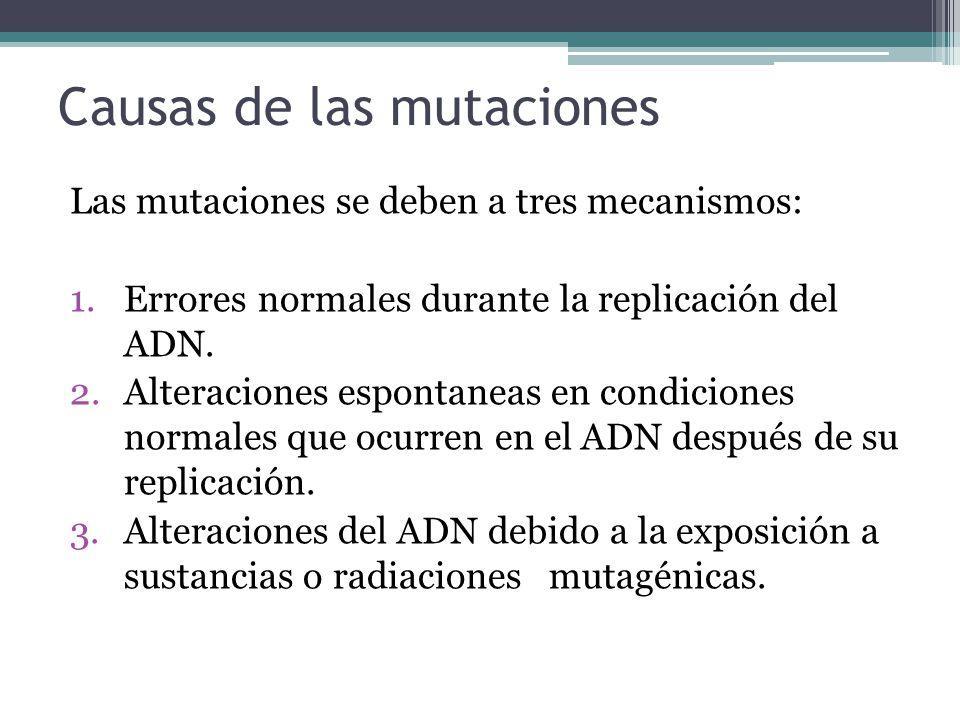 Causas de las mutaciones