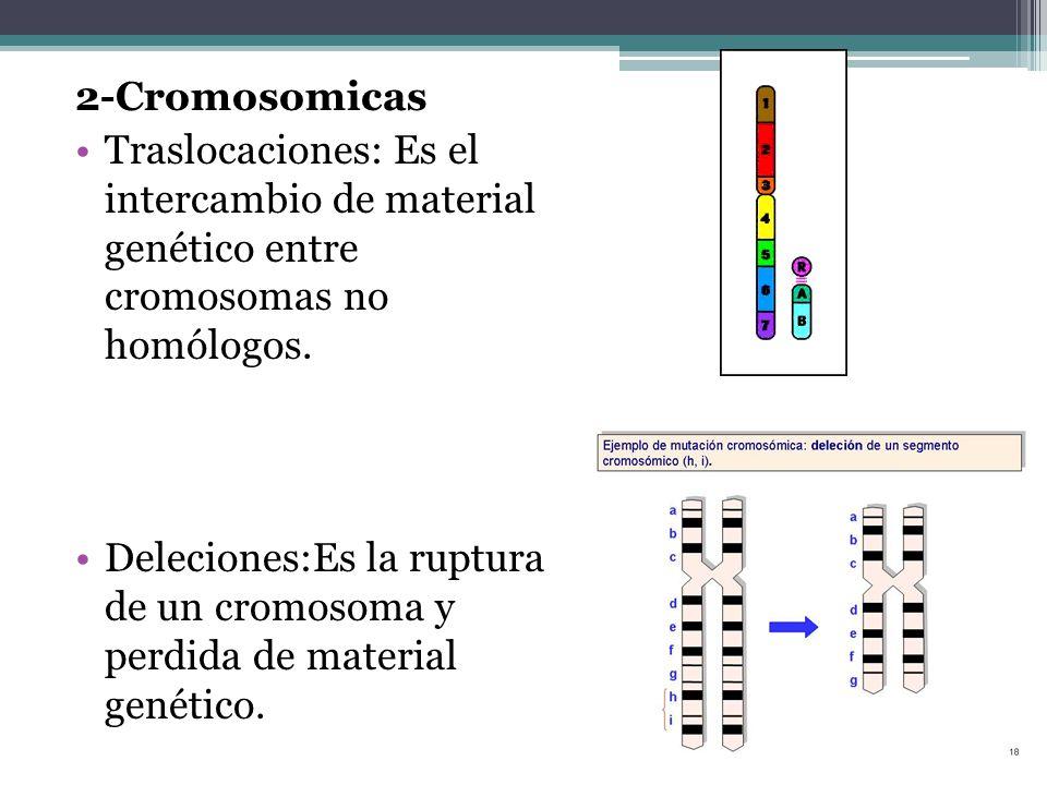 2-Cromosomicas Traslocaciones: Es el intercambio de material genético entre cromosomas no homólogos.