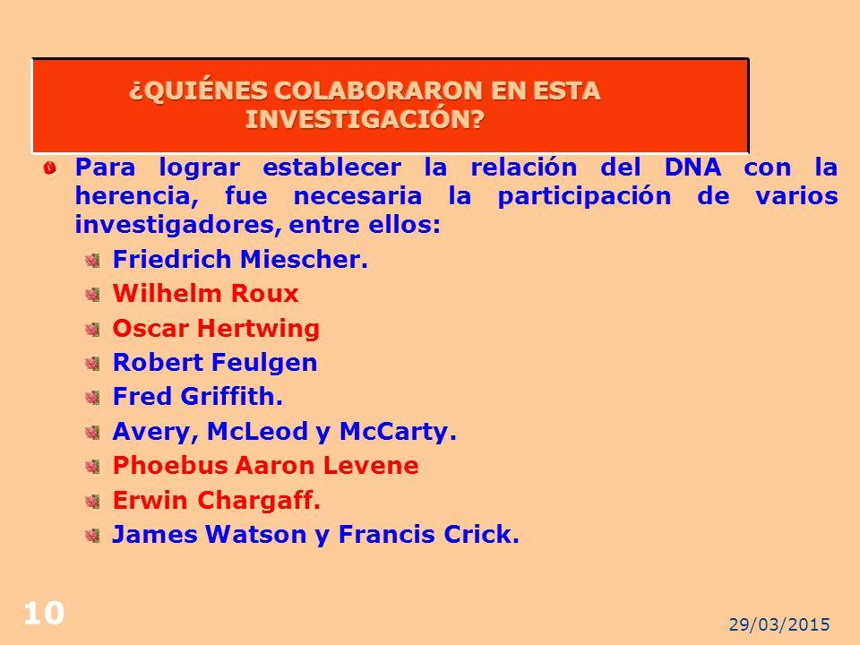 ¿QUIÉNES COLABORARON EN ESTA INVESTIGACIÓN