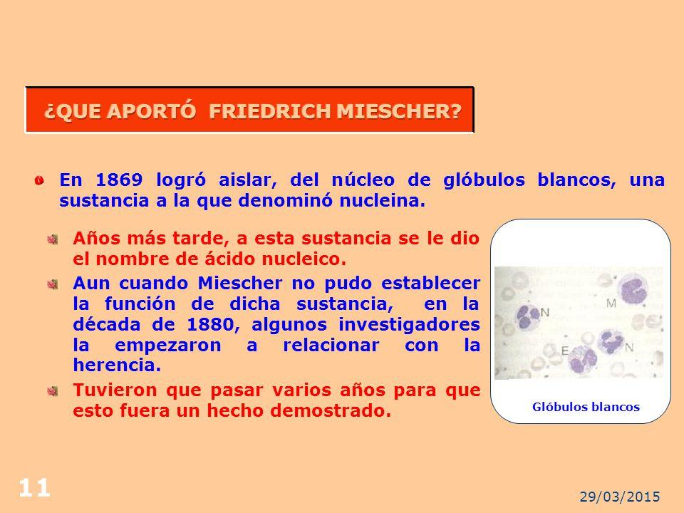 ¿QUE APORTÓ FRIEDRICH MIESCHER