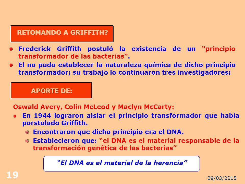 RETOMANDO A GRIFFITH APORTE DE: