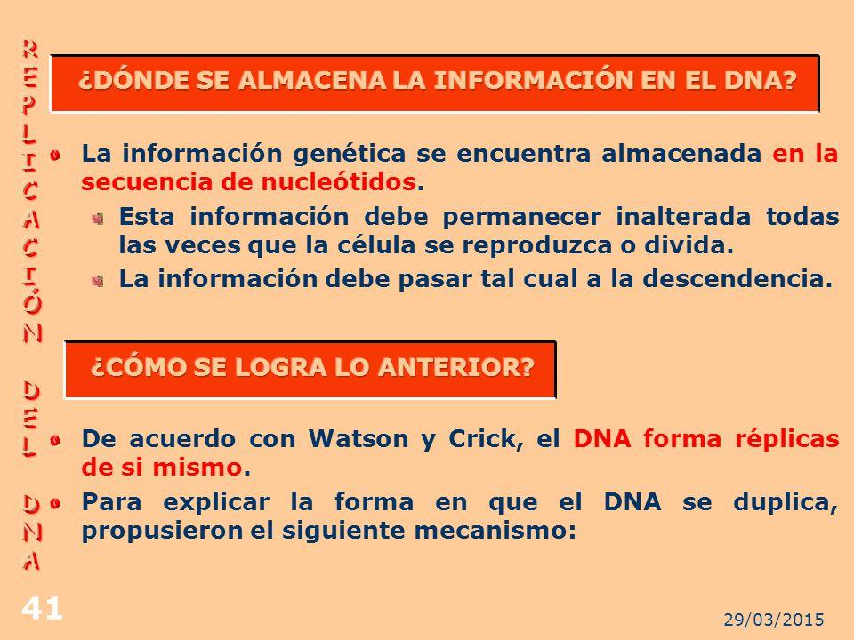 ¿DÓNDE SE ALMACENA LA INFORMACIÓN EN EL DNA