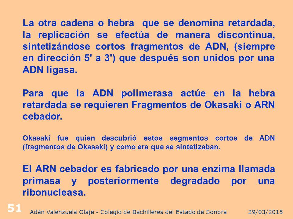 Adán Valenzuela Olaje - Colegio de Bachilleres del Estado de Sonora