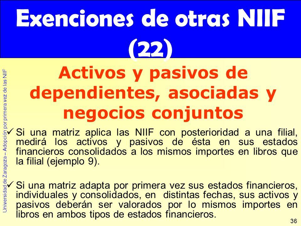 Exenciones de otras NIIF (22)