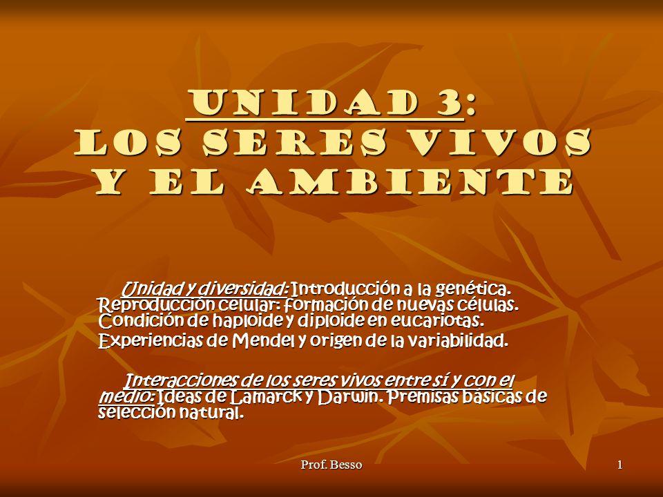 UNIDAD 3: LOS SERES VIVOS Y EL AMBIENTE