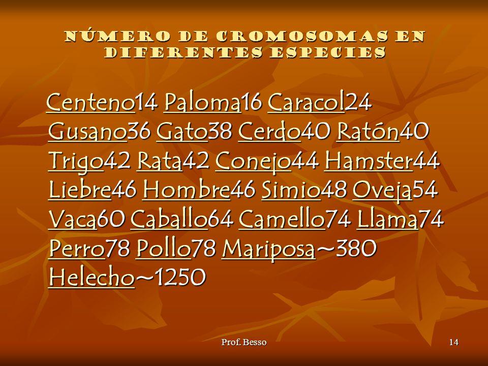 Número de cromosomas en diferentes especies