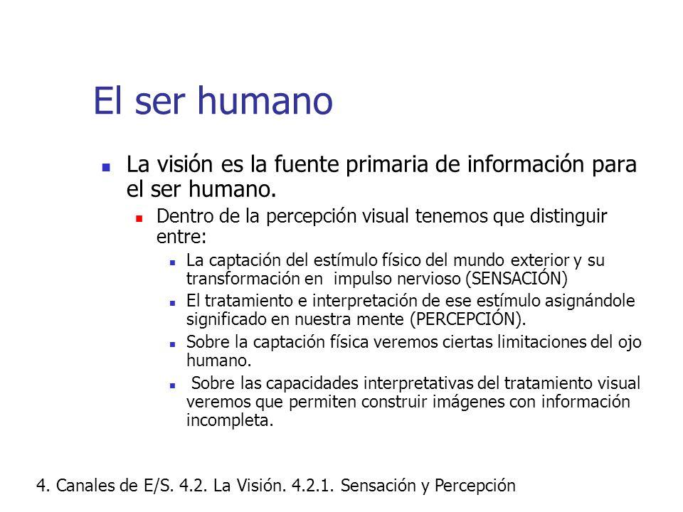 El ser humano La visión es la fuente primaria de información para el ser humano. Dentro de la percepción visual tenemos que distinguir entre: