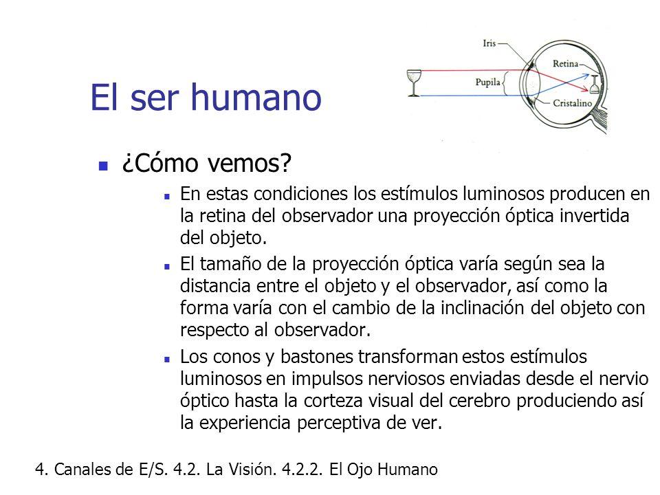 El ser humano ¿Cómo vemos