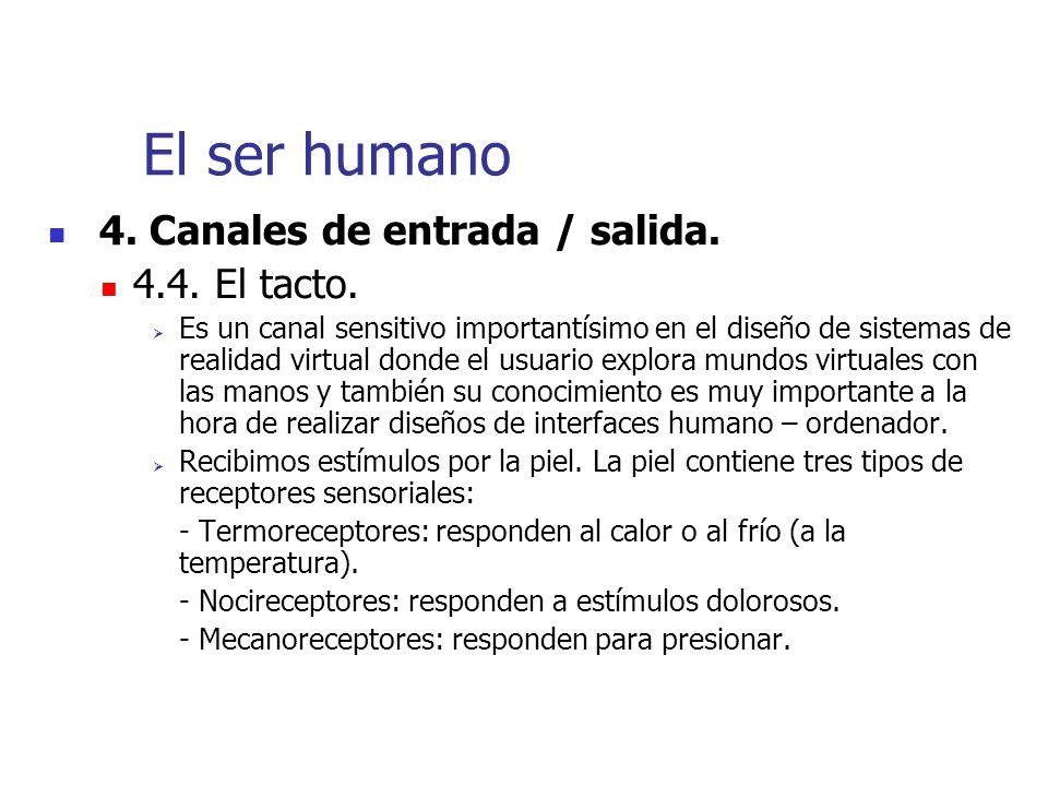 El ser humano 4. Canales de entrada / salida. 4.4. El tacto.