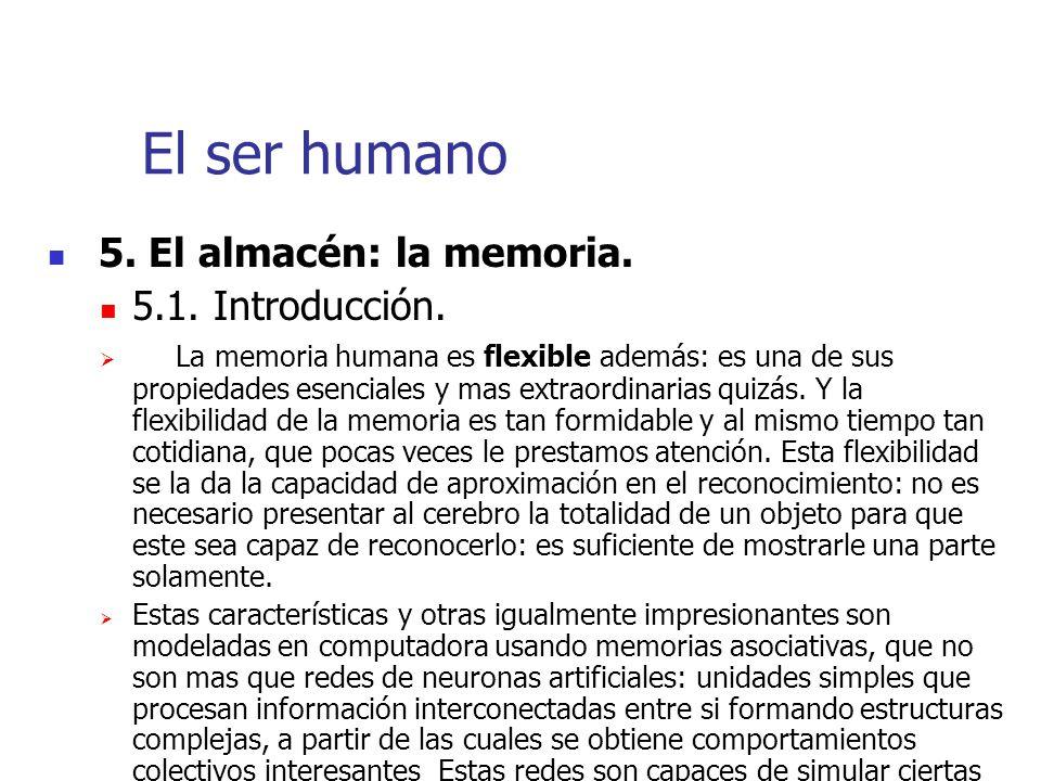 El ser humano 5. El almacén: la memoria. 5.1. Introducción.