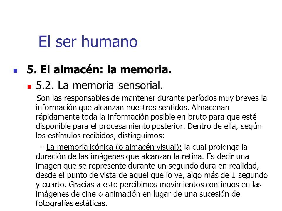 El ser humano 5. El almacén: la memoria. 5.2. La memoria sensorial.