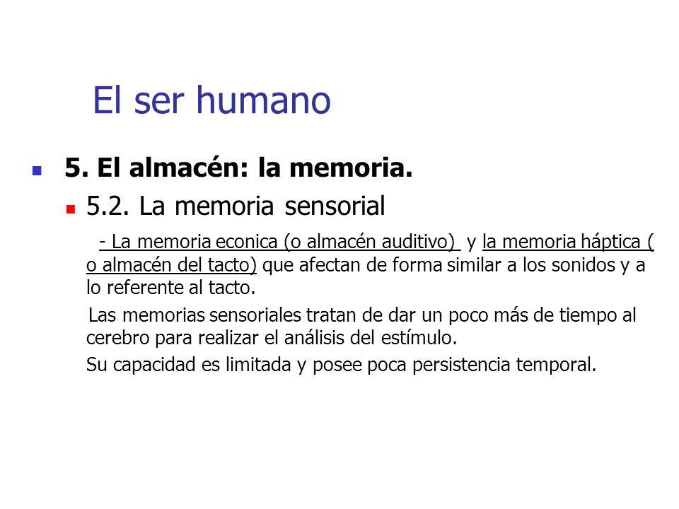 El ser humano 5. El almacén: la memoria. 5.2. La memoria sensorial