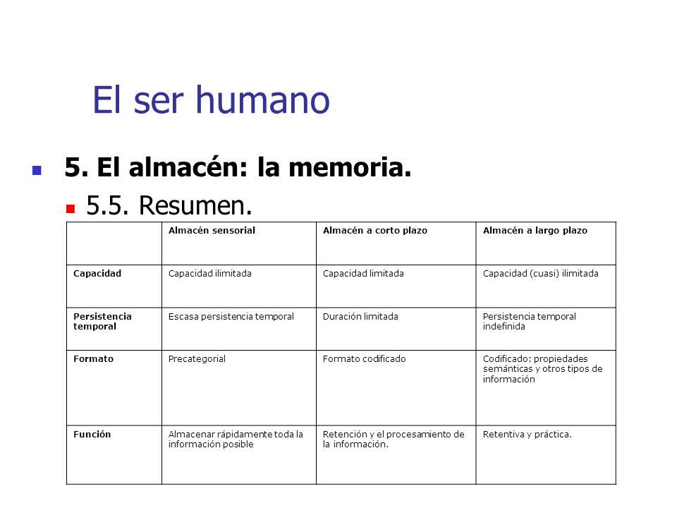 El ser humano 5. El almacén: la memoria. 5.5. Resumen.