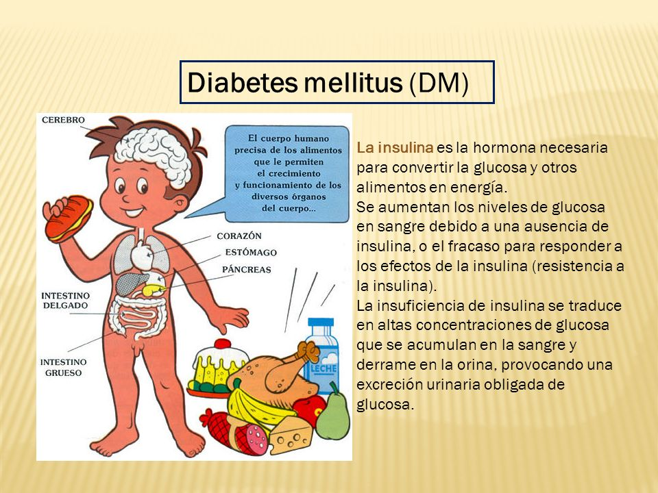 Diabetes mellitus (DM) - ppt descargar