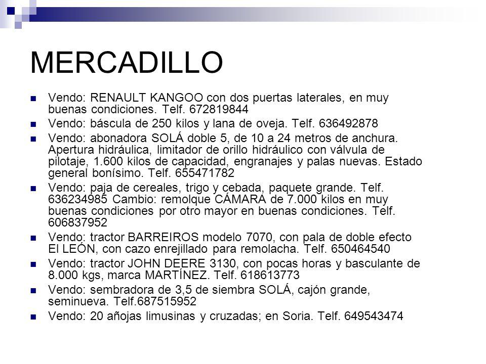MERCADILLO Vendo: RENAULT KANGOO con dos puertas laterales, en muy buenas condiciones. Telf. 672819844.
