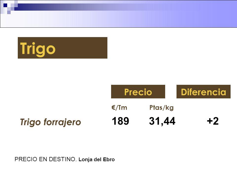Trigo 189 31,44 +2 Precio Diferencia Trigo forrajero €/Tm Ptas/kg