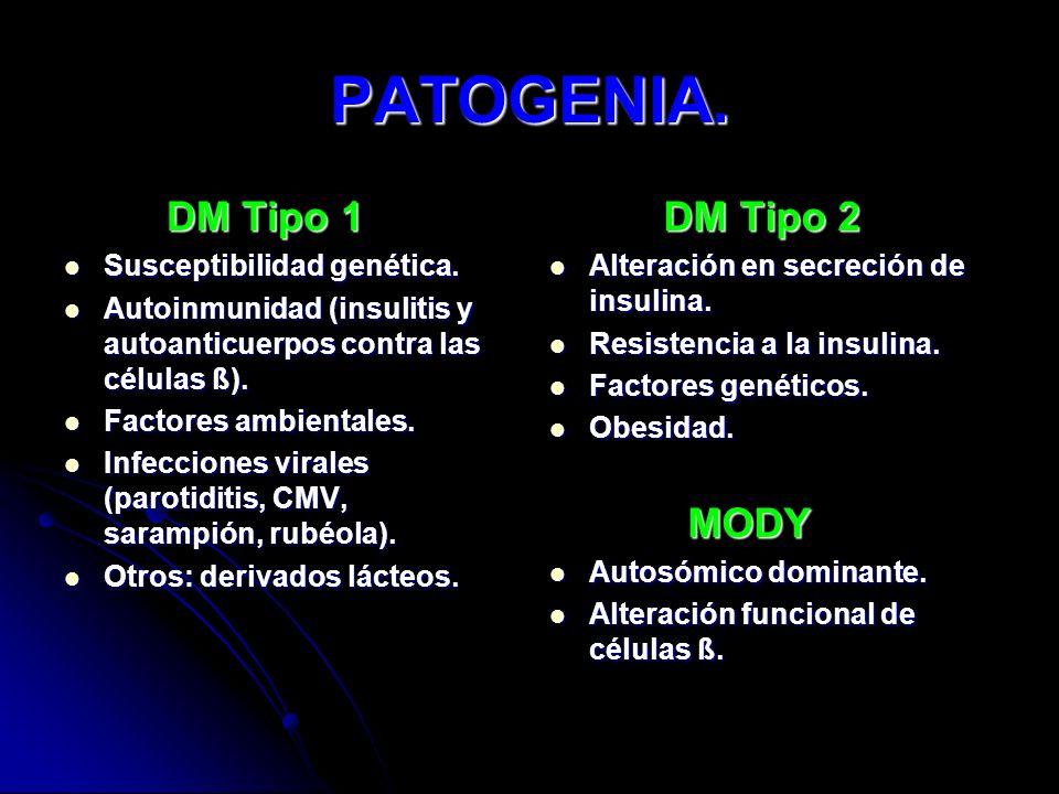 PATOGENIA. DM Tipo 1 DM Tipo 2 Susceptibilidad genética.