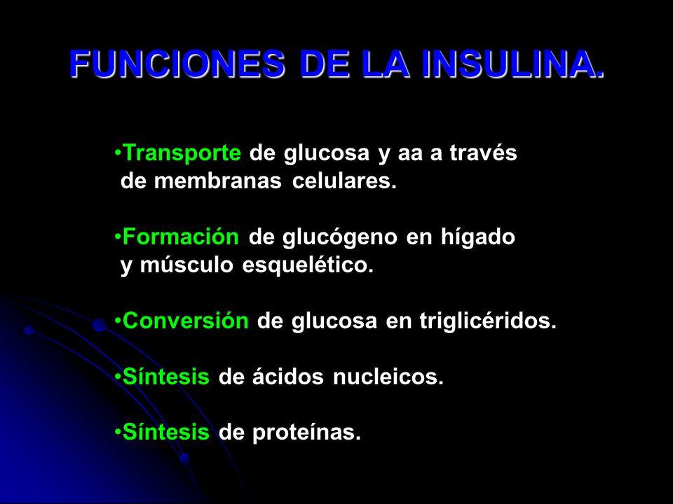 FUNCIONES DE LA INSULINA.
