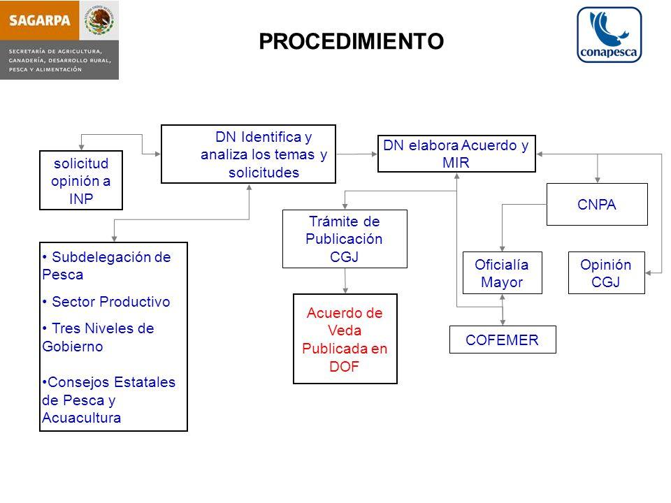 PROCEDIMIENTO DN Identifica y analiza los temas y solicitudes