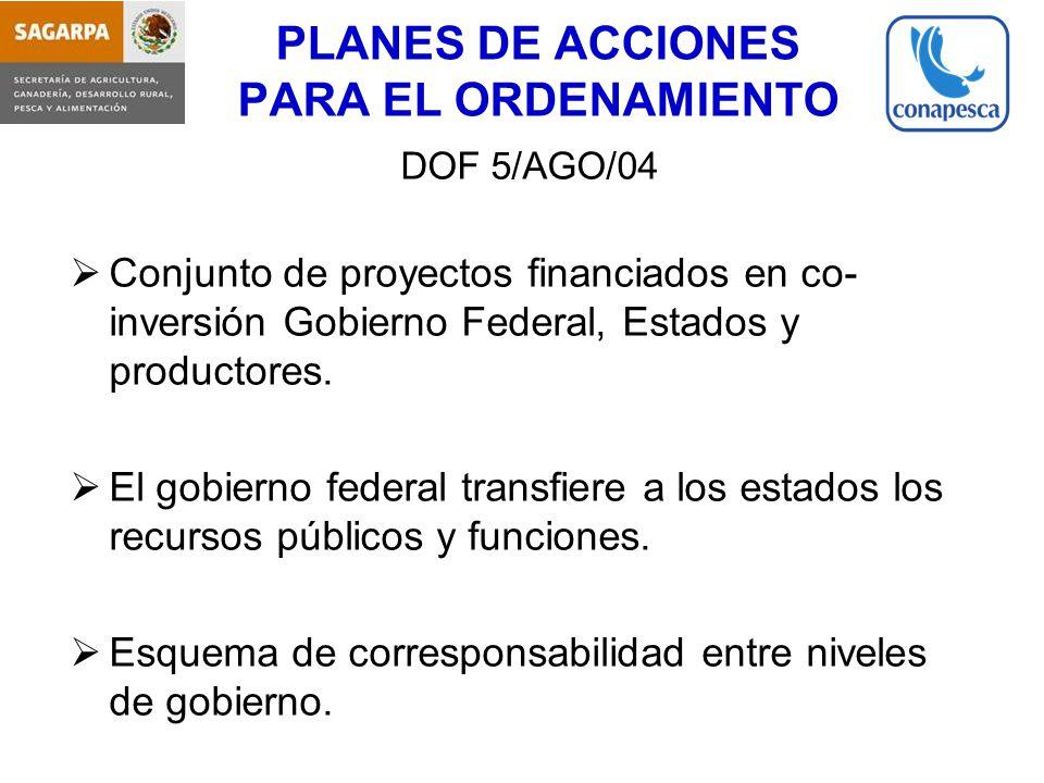 PLANES DE ACCIONES PARA EL ORDENAMIENTO