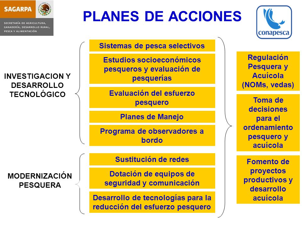 PLANES DE ACCIONES Sistemas de pesca selectivos