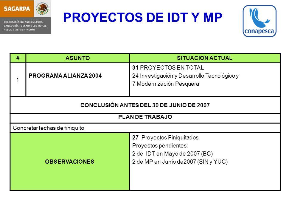 CONCLUSIÓN ANTES DEL 30 DE JUNIO DE 2007
