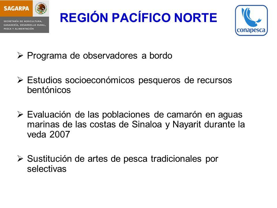 REGIÓN PACÍFICO NORTE Programa de observadores a bordo