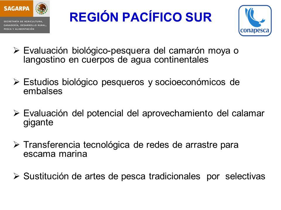 REGIÓN PACÍFICO SUR Evaluación biológico-pesquera del camarón moya o langostino en cuerpos de agua continentales.