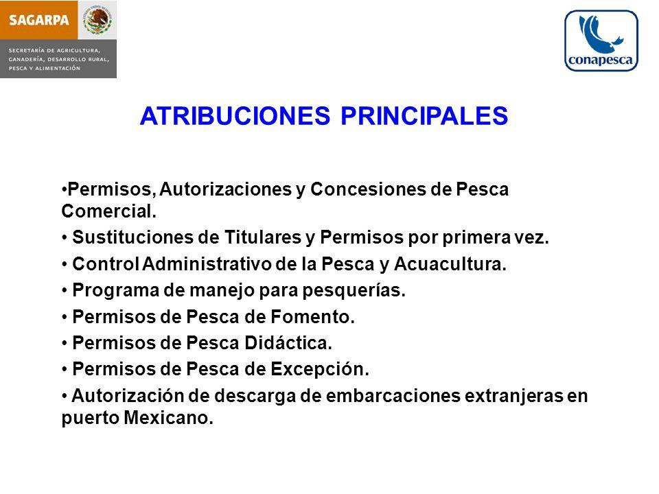 ATRIBUCIONES PRINCIPALES