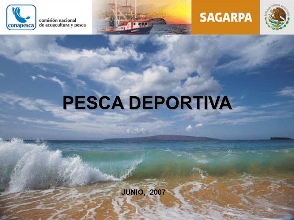 PESCA DEPORTIVA JUNIO, 2007