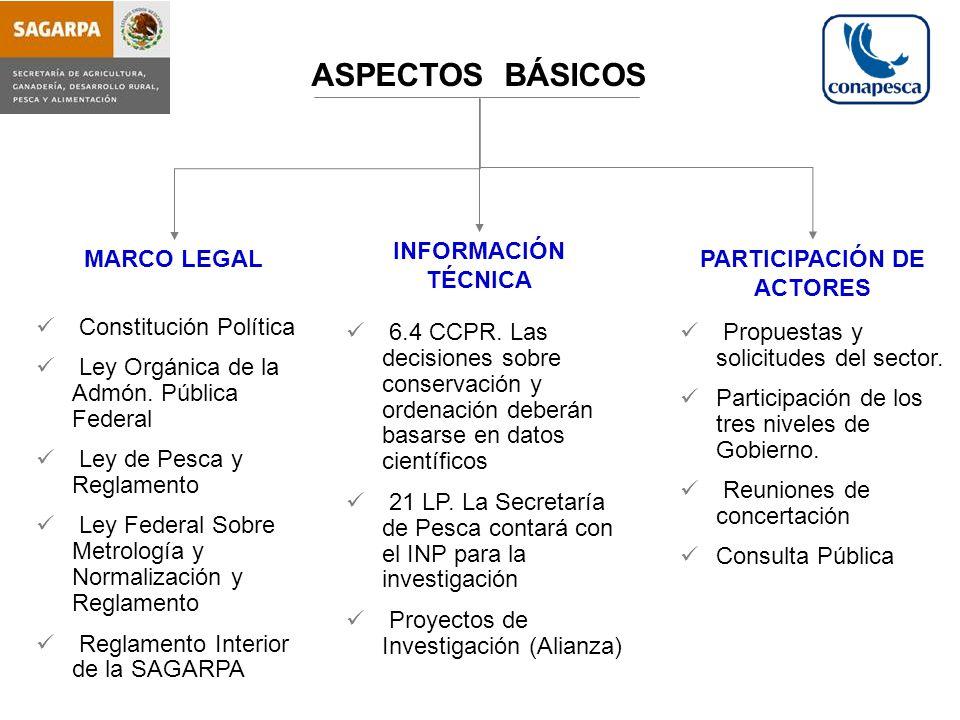 PARTICIPACIÓN DE ACTORES
