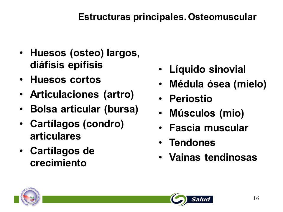 Huesos (osteo) largos, diáfisis epífisis Huesos cortos