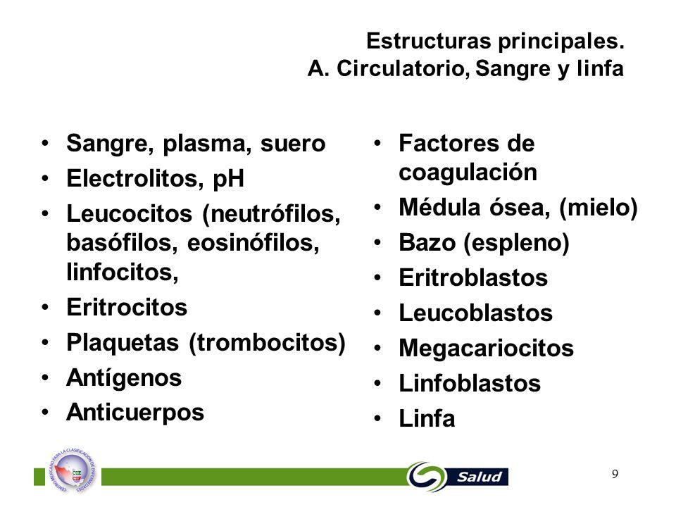 Estructuras principales. A. Circulatorio, Sangre y linfa