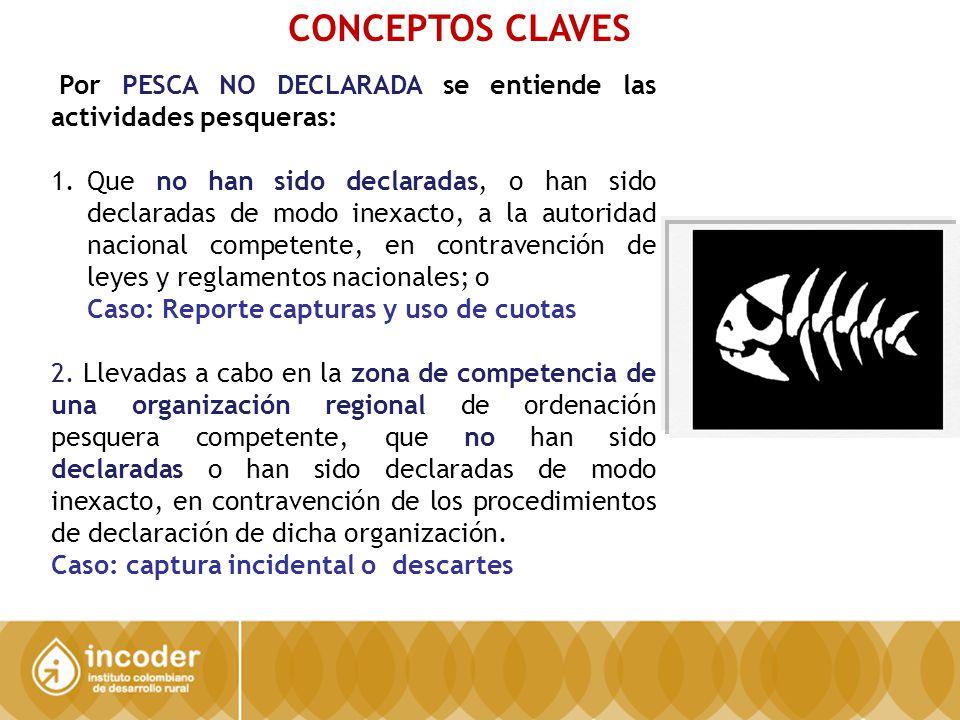 CONCEPTOS CLAVES Por PESCA NO DECLARADA se entiende las actividades pesqueras: