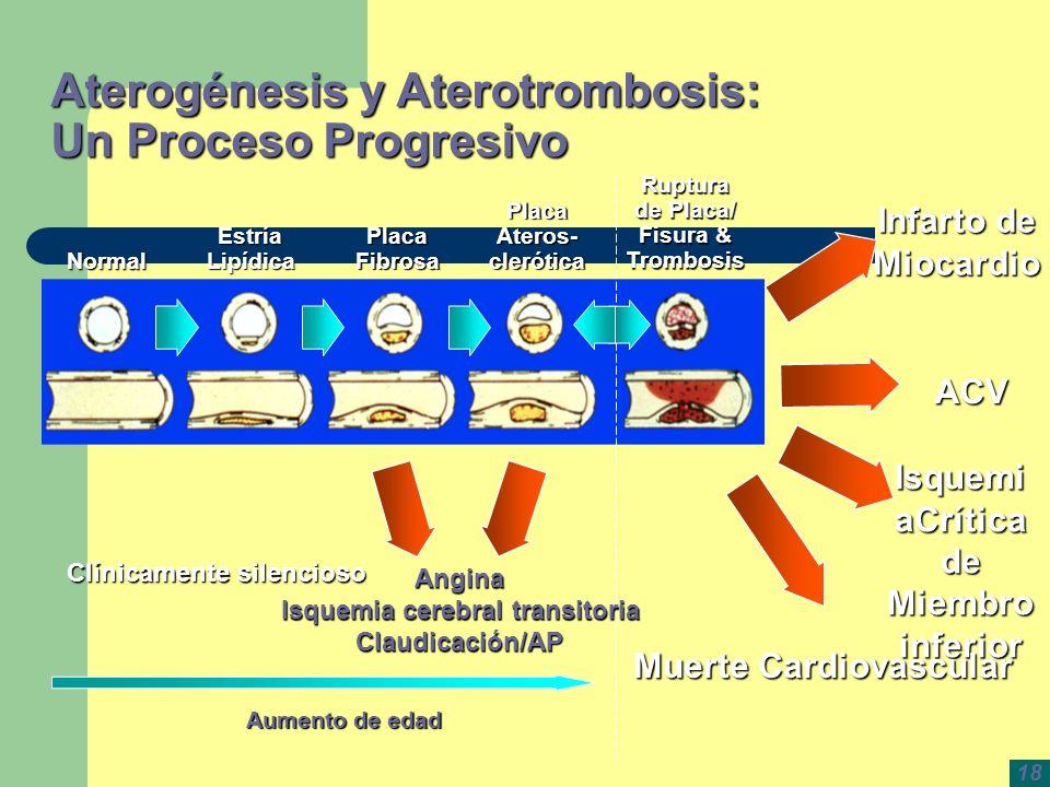 Aterogénesis y Aterotrombosis: Un Proceso Progresivo