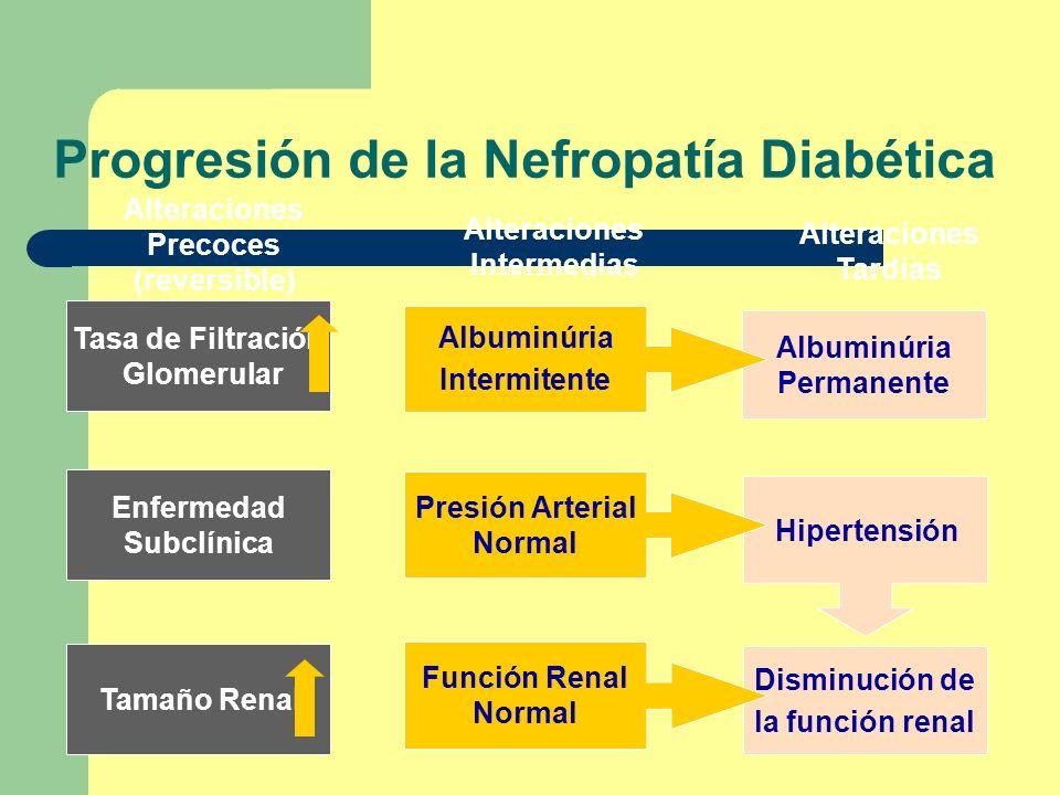 Progresión de la Nefropatía Diabética
