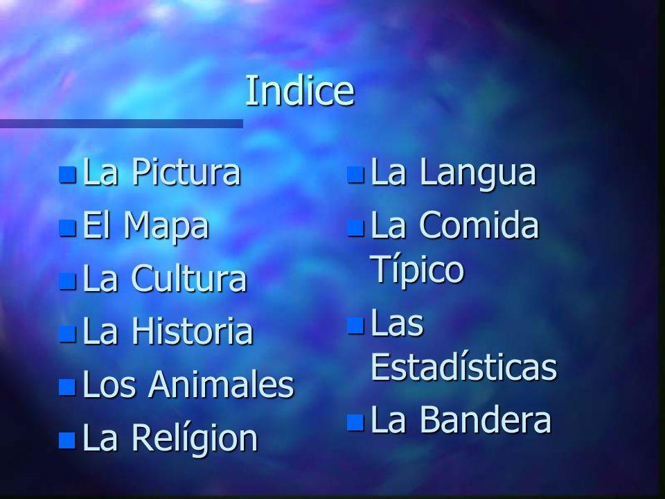 Indice La Pictura El Mapa La Cultura La Historia Los Animales