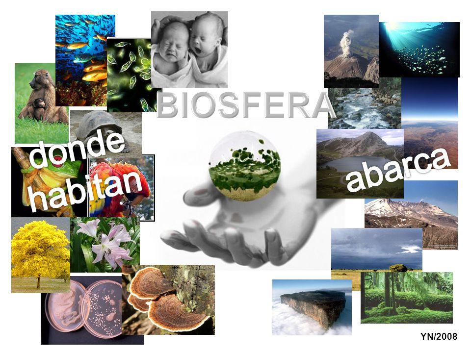 BIOSFERA donde habitan abarca YN/2008