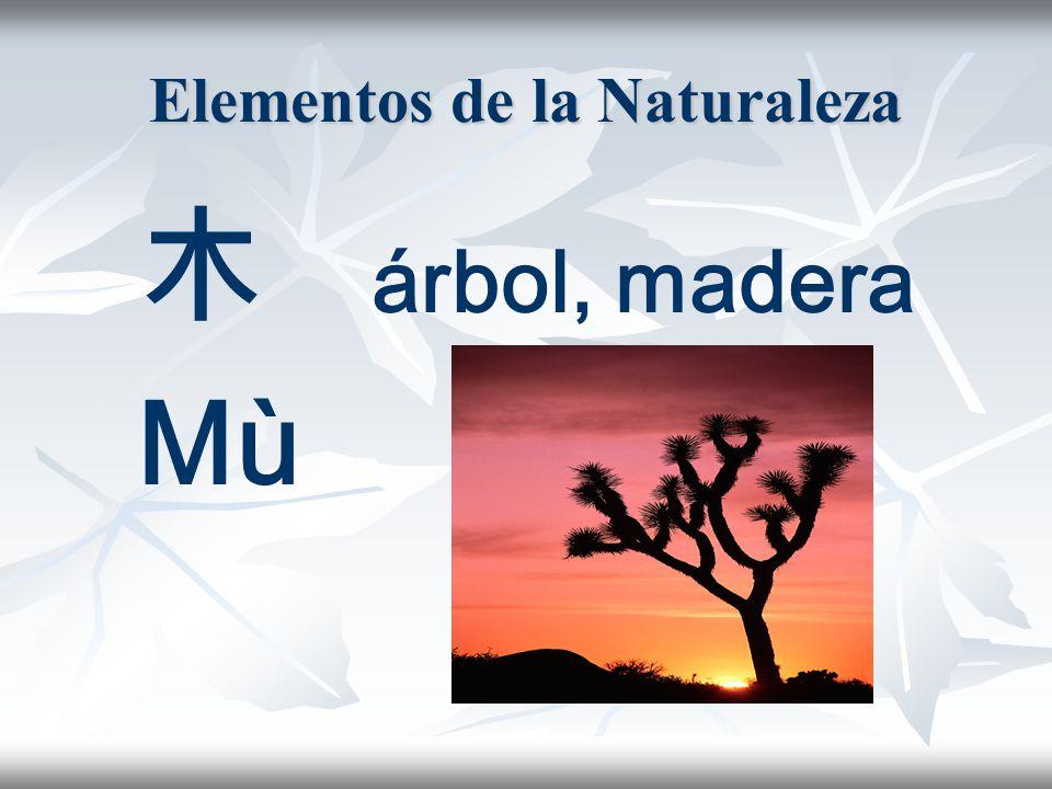 Elementos de la Naturaleza