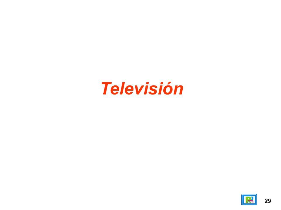 Televisión 29